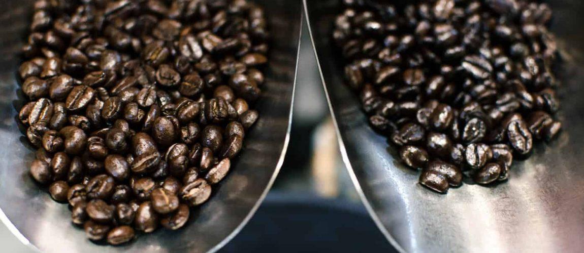 ทำความรู้จักกาแฟ